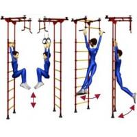 Гимнастика и упражнения